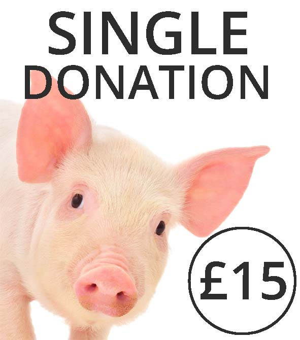 Make a donation to the farm