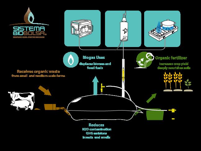 Sistema BioBolsa